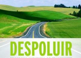 DESPOLUIR – Programa Ambiental do Transporte